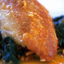 Sherry-cooked chicken on tapas spinach-chicken recipes-new recipes-recipe ideas-woman and home
