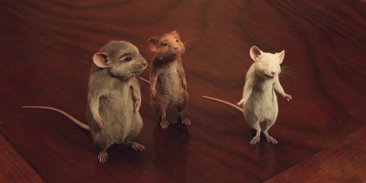 Daisy, Bruno, and the Boy as Mice