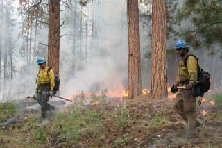 Blacklining operations in Arizona, wildfires