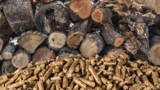 Biomass Boiler Guide