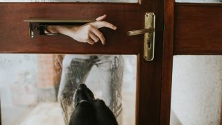 Man putting hand through letterbox and dog at door