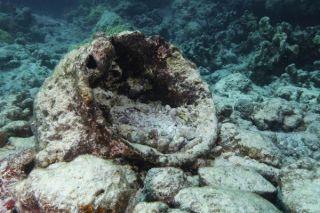 shipwreck-pot-110211