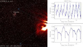 A STEREO Heliospheric Imager (HI-1A) image taken on March 7, 2010 (left) with two variable stars highlighted in the image. The varying brightness of the two stars, V837 Tau and V1129 Tau are shown (right top and bottom, respectively).