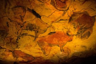 A replica of a painting of bison from the Altamira Cave in Cantabria, Spain.