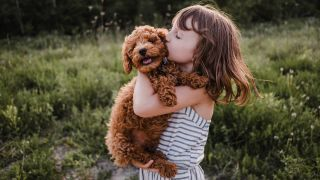 One of the most affectionate dog breeds, Labradoodle being cuddled outside by young girl