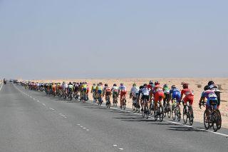 Cycling: 89th Road World Championships 2016 / Men Elite Peloton / Desert / Landscape / Aspire Zone - The Pearl Qatar (257,5km)/ Men Elite / WC / pool gw © Tim De Waele