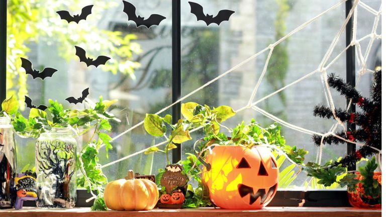 Halloween window ideas: