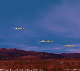 Explore Venus Tonight