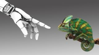 A robot hand reaching to touch a chameleon.