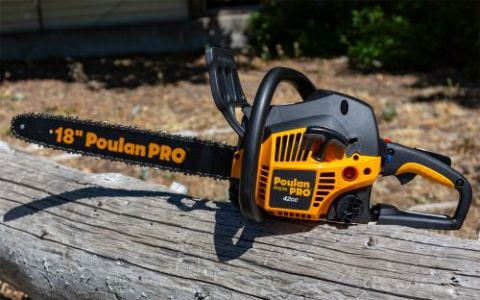 Poulan Pro PP4218A Review - Pros, Cons and Verdict | Top Ten Reviews