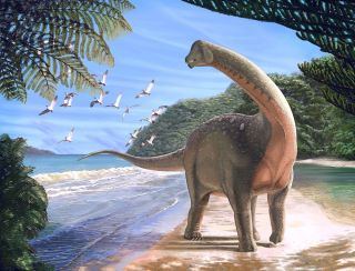 Even though it was discovered in Egypt, <i>Mansourasaurus shahinae</i> had more in common with dinosaurs discovered in Europe than it did with dinosaurs found in southern Africa.
