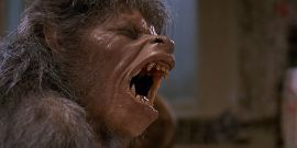 An American Werewolf In London Is Being Remade, Find Out Who's Involved