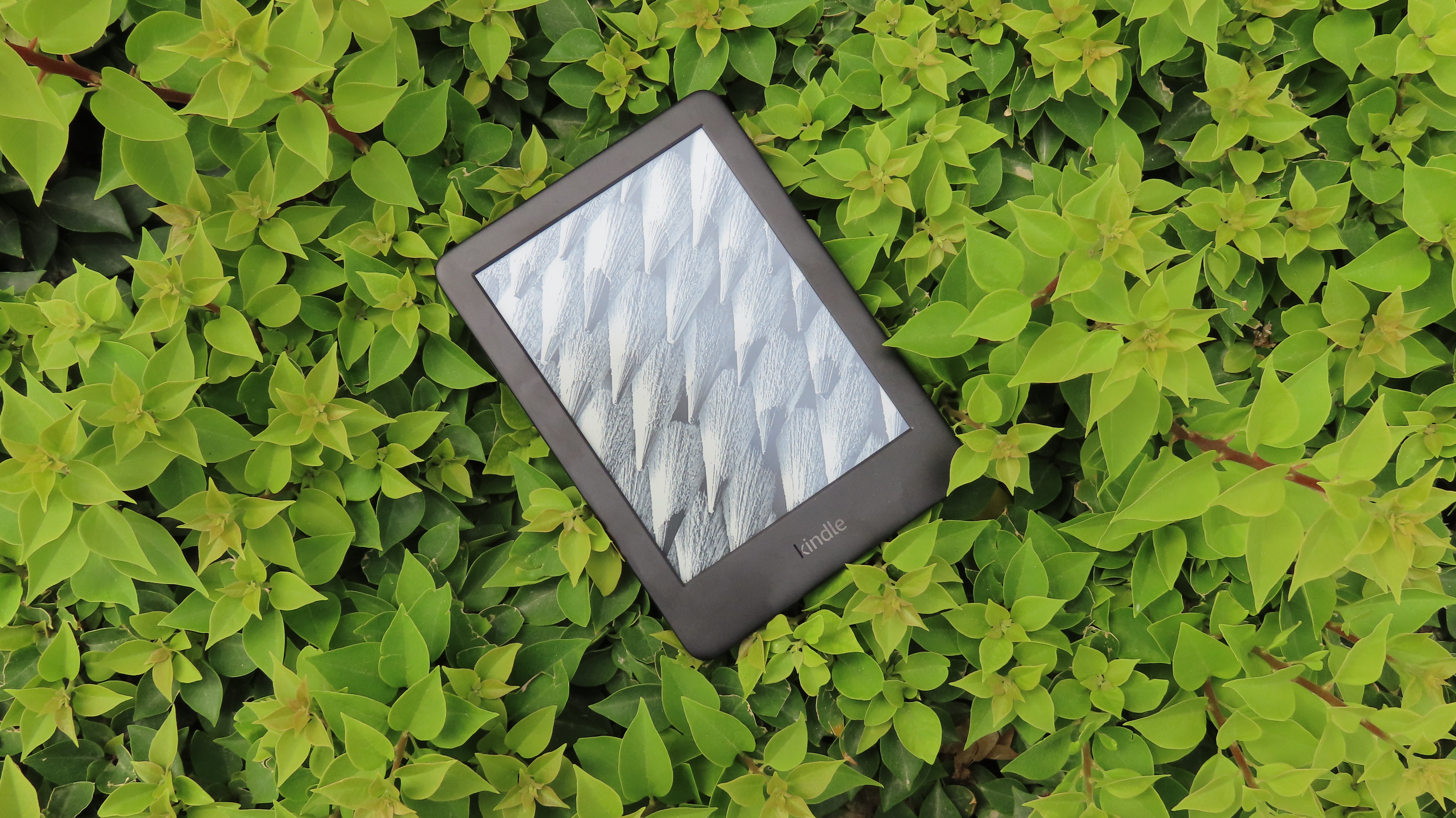 Amazon Kindle vs Kindle Paperwhite: is it worth spending more