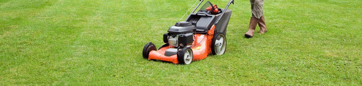 Best Gas Lawn Mowers Top Ten Reviews