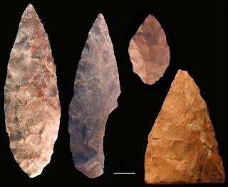 Stone tools known as bifacial points recovered from Blombos Cave, South Africa.