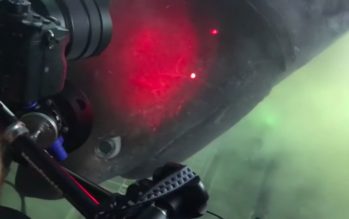 Diver Has Epic Nose-to-Nose Encounter with One of the Most Elusive Sharks Lurking in the Deep Sea