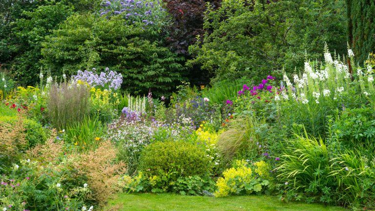 Summer flower border in full growth