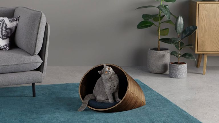 Made Kyali Oval Pet Cat Bed in walnut, with grey cat inside on blue rug beside grey sofa and plants