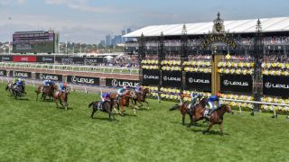 2019 melbourne cup live stream