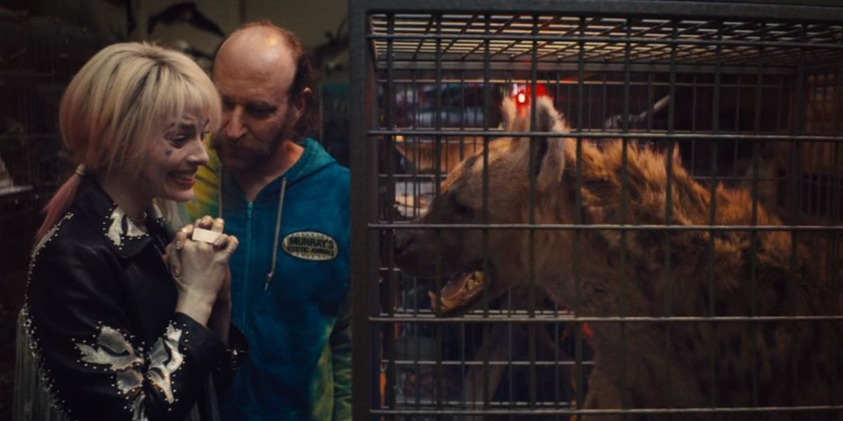 Birds Of Prey Actually Considered Filming With A Real Hyena Cinemablend
