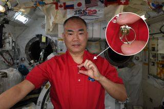 JAXA astronaut Soichi Noguchi, a member of the Association of Space Explorers executive committee, displays a Universal Astronaut Insignia on the International Space Station.