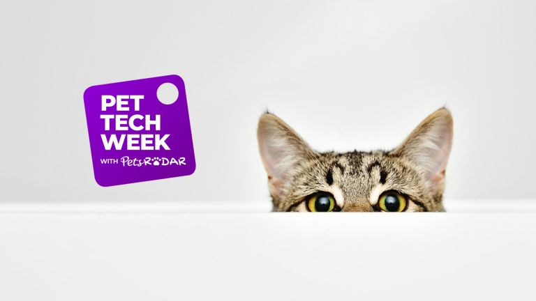 It's Pet Tech Week on T3, in association with PetRadar!
