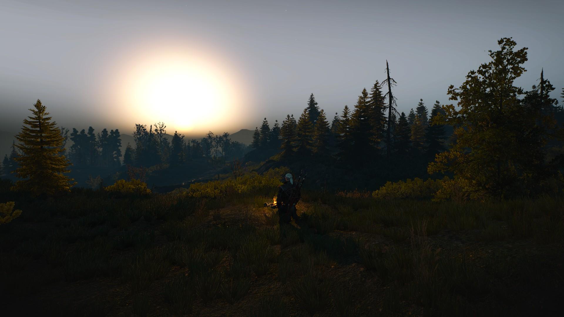 Best Witcher 3 Mods - Preparations Mod