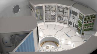 Deep Space Habitat Interior
