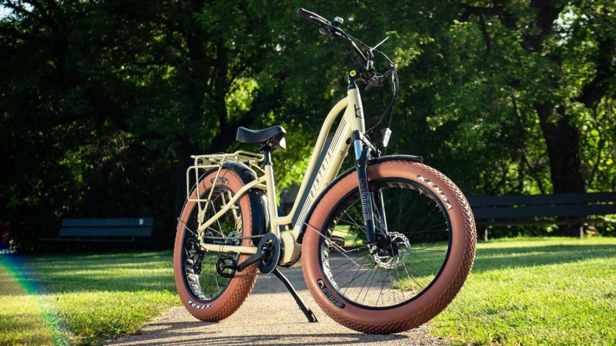 Biktrix Stunner X Ebike review: Big and brawny for back roads