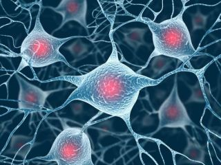 3d illustration of brain cells