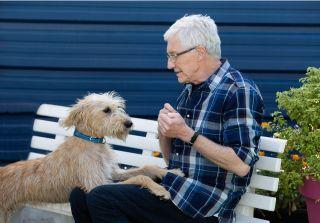 Paul O'Grady meets Marti a lurcher puppy