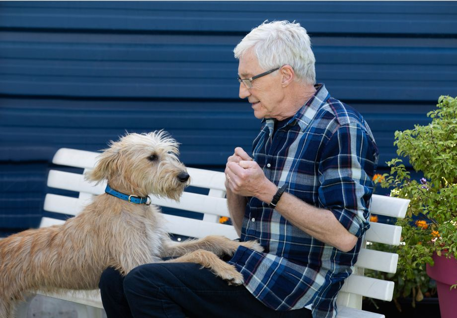 Paul O'Grady meets Marti a lurcher puppy
