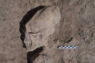 skull binding, deforming skulls