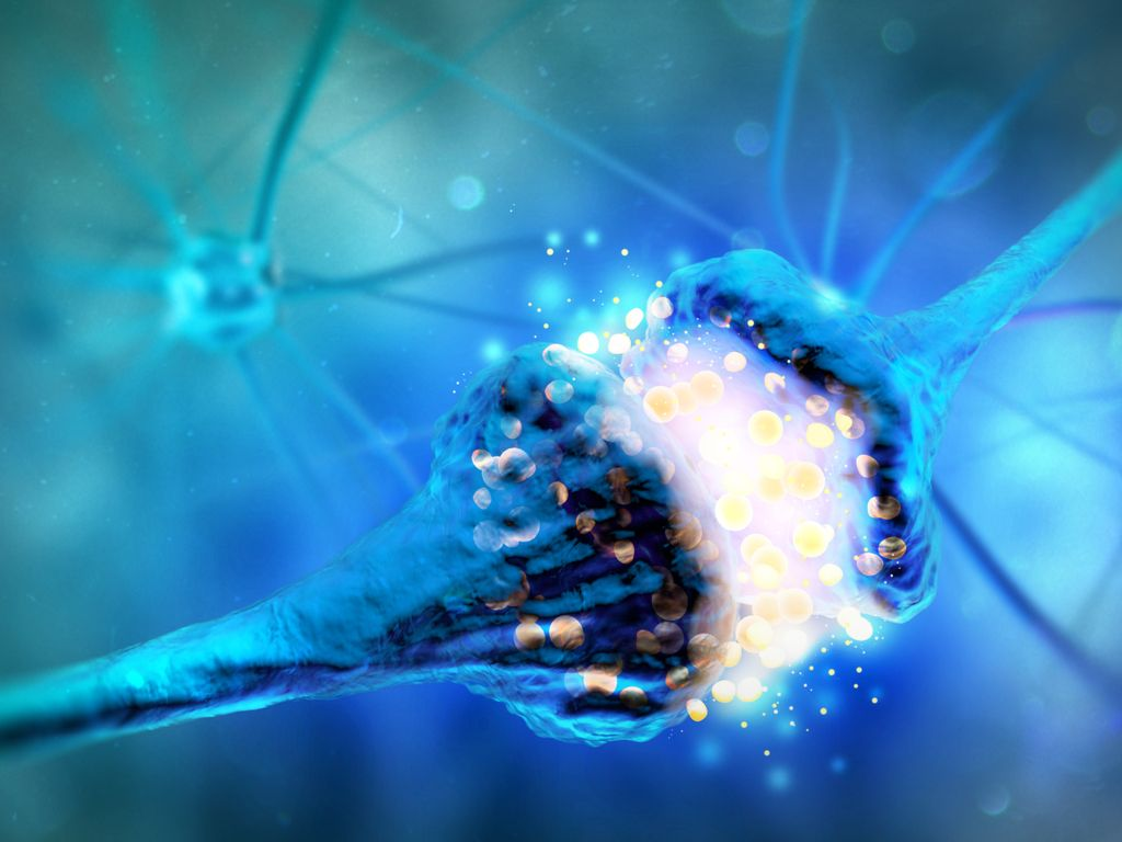 Is There Actually Science Behind Dopamine Fasting Live Science