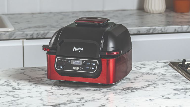 Black Friday Ninja Grill deal: Foodi Health Grill & Air Fryer