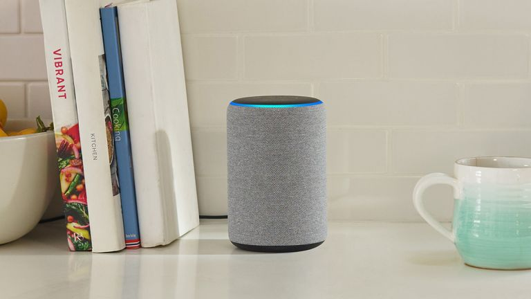 Amazon Echo home security