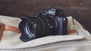 Best full-frame camera 2019: 10 advanced DSLRs and mirrorless cameras 8