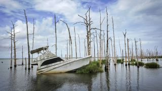 An abandoned boat sits in the water amid dead cypress trees in coastal waters and marsh August 26, 2019 in Venice, Louisiana, in a region already impacted by sea level rise.