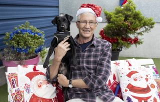 Paul O'Grady: For the Love of Dogs at Christmas