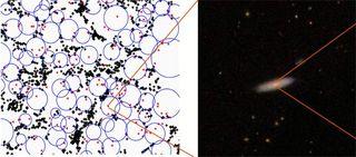 Loner Black Holes Lurk in Cosmic Voids