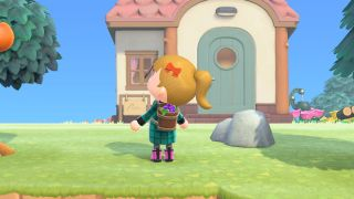 Animal Crossing: New Horizons grape harvest basket