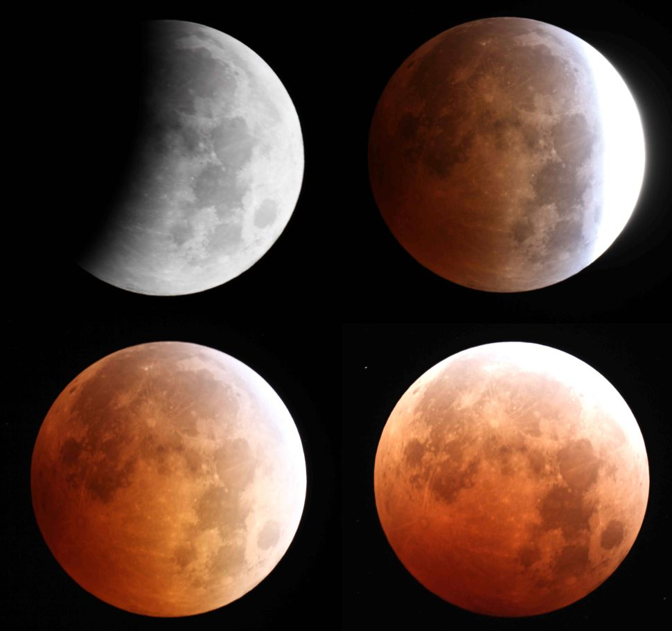 Just how 'bloody' will the Super Flower Blood Moon eclipse this week be?