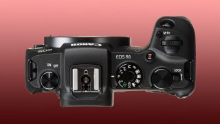 Canon rumored to release Canon EOS R6: a 20MP mirrorless marvel