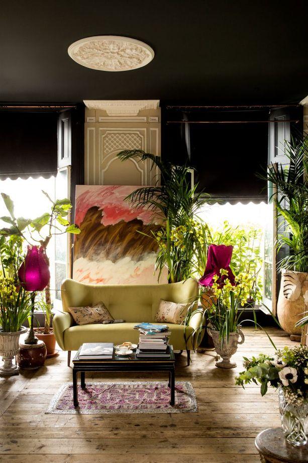 Stylish ideas for Living Room Windows