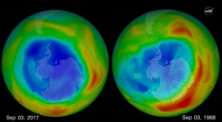 The hole in Earth's protective ozone layer that forms over Antarctica each September was the smallest seen since 1988, according to NASA and NOAA.