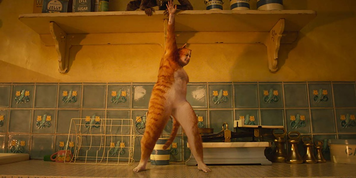 Cats Rebel Wilson dancing on a kitchen counter