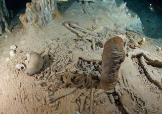 A prehistoric human skeleton in the Chan Hol Cave near Tulúm on Mexico's Yucatán peninsula.