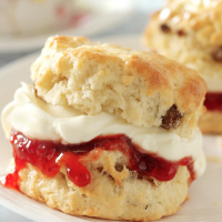 Fruited Scone