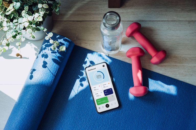 best dumbbells for workout in living room