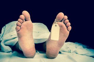 autopsy, cadaver